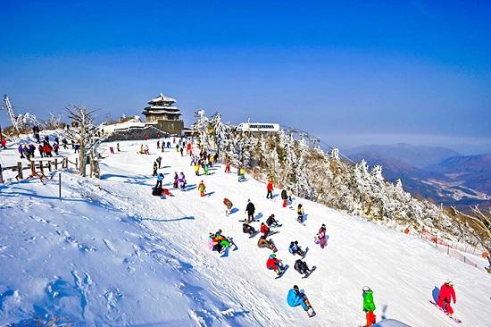 Những kinh nghiệm trượt tuyết khi du lịch Hàn Quốc mùa đông không ...